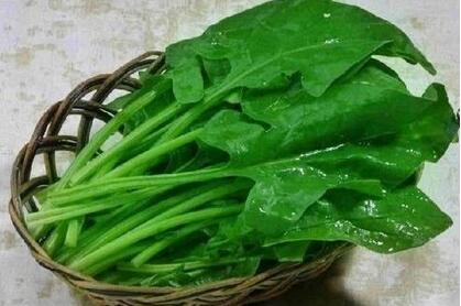 寒露后常搓耳朵,多吃三种根菜