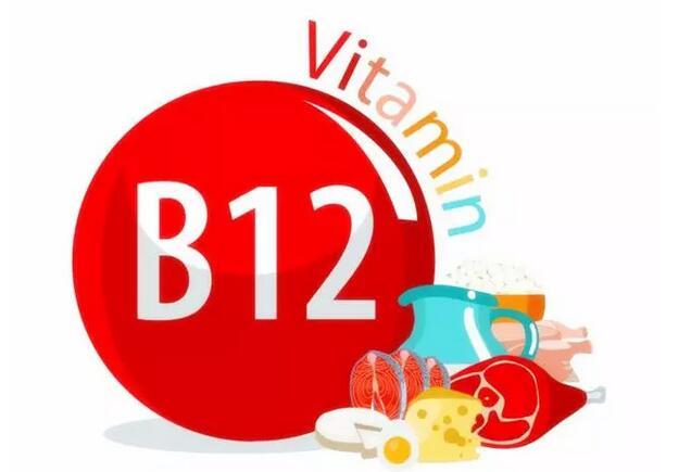 维生素B12的服用禁忌,合理补充最重要